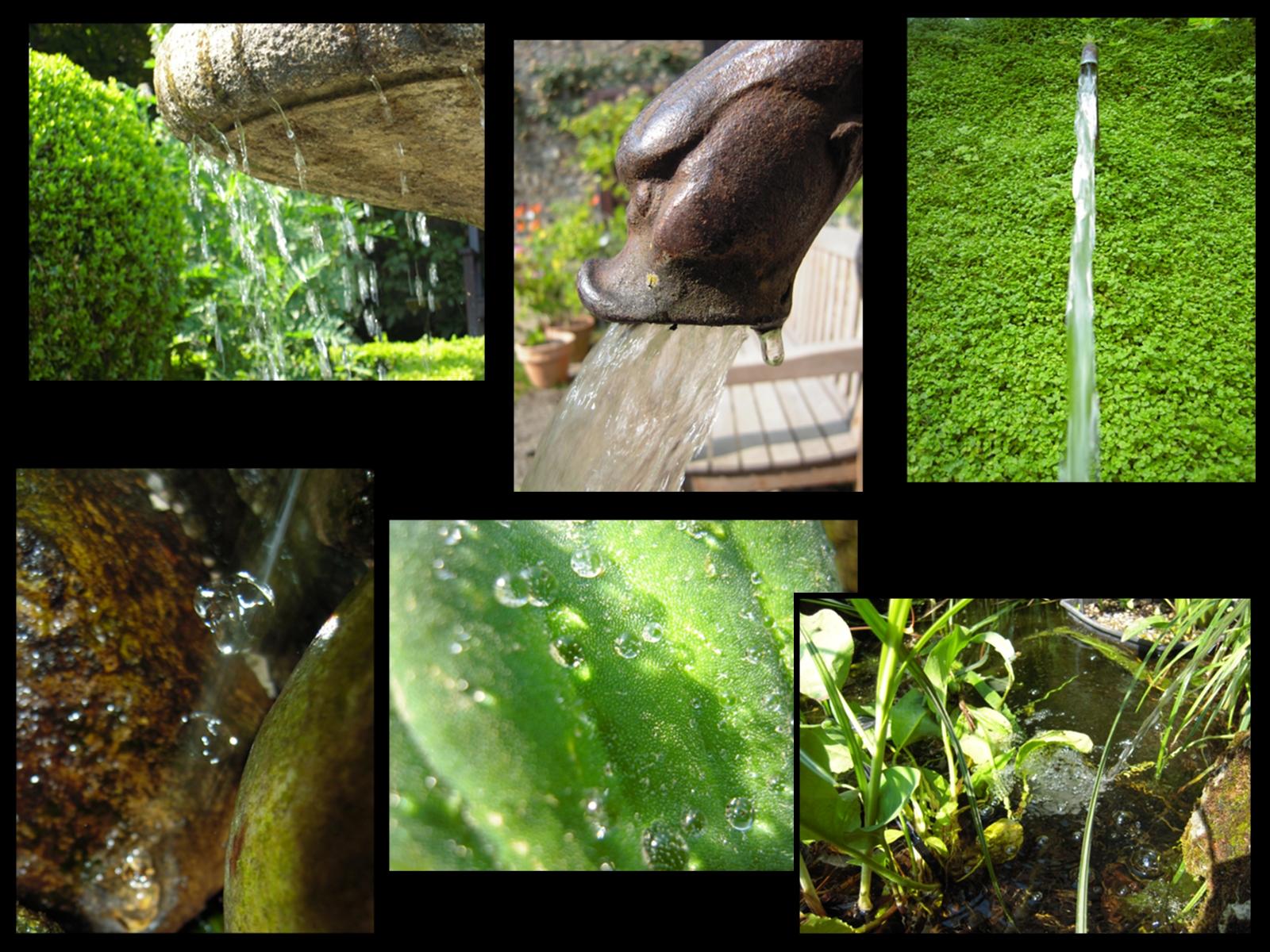Eau : les fontaines et bassins du jardin