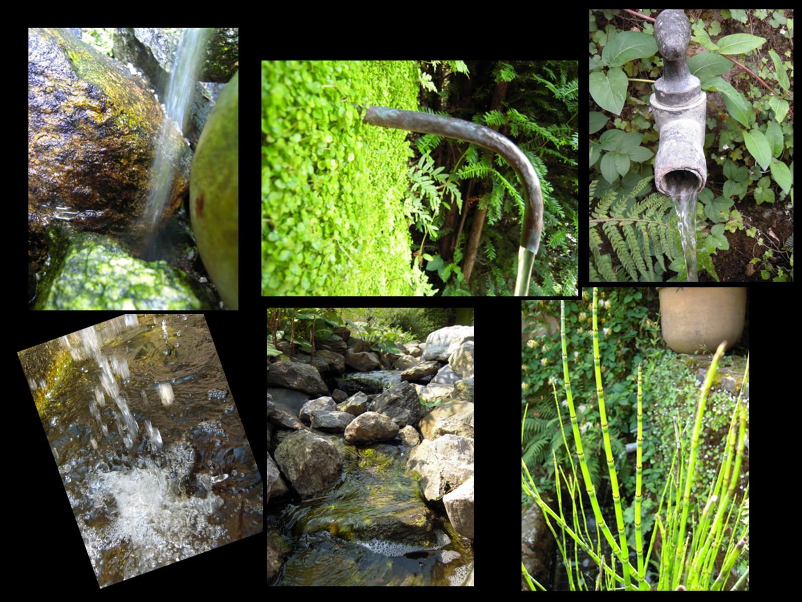 L 39 eau l or bleu des jardins le jardin des cinq sens for Jardin des 5 sens yvoire