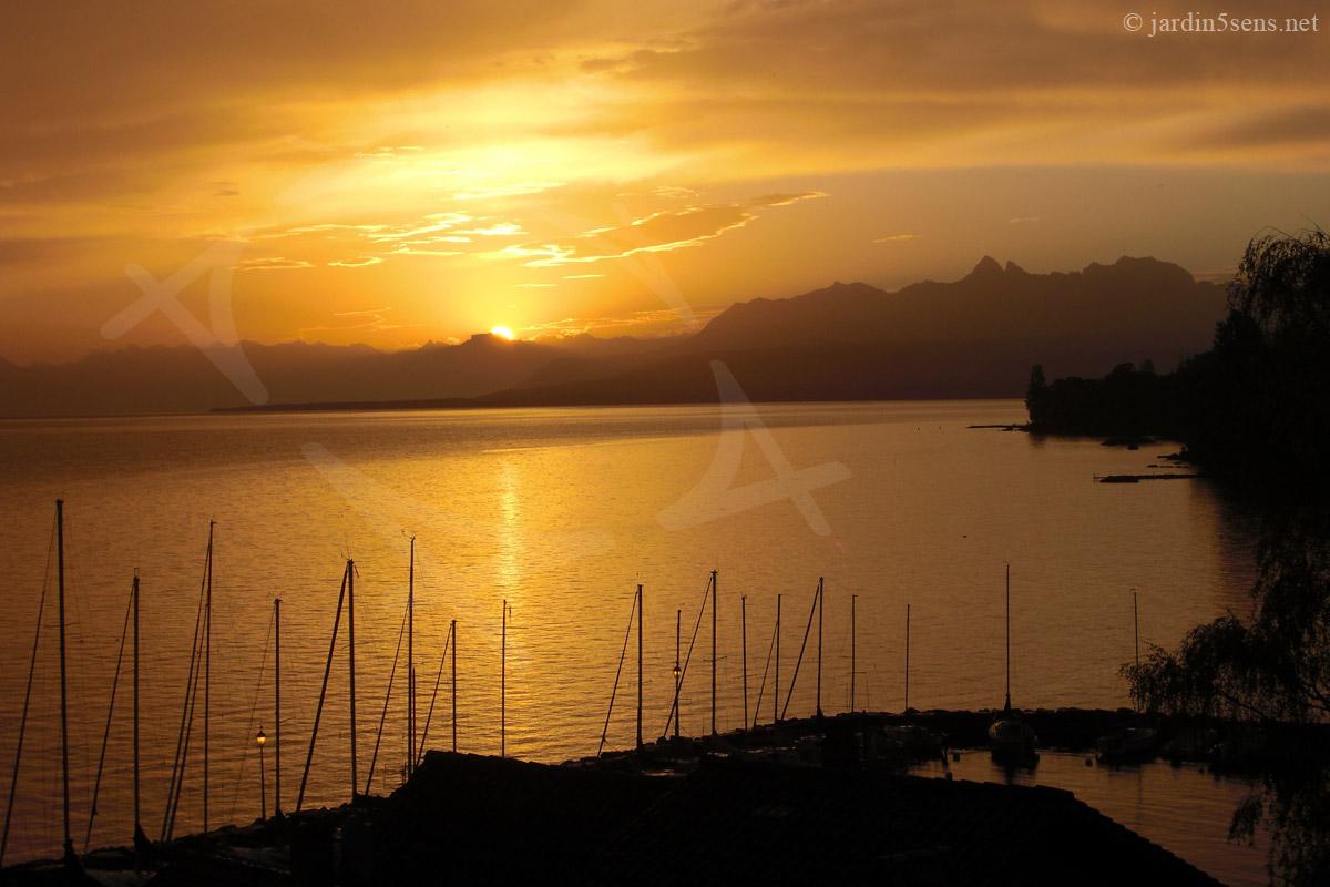 Lever de soleil sur le Lac Léman, depuis Yvoire. | Le Labyrinthe, Jardin des Cinq Sens. Haute-Savoie (74). France.