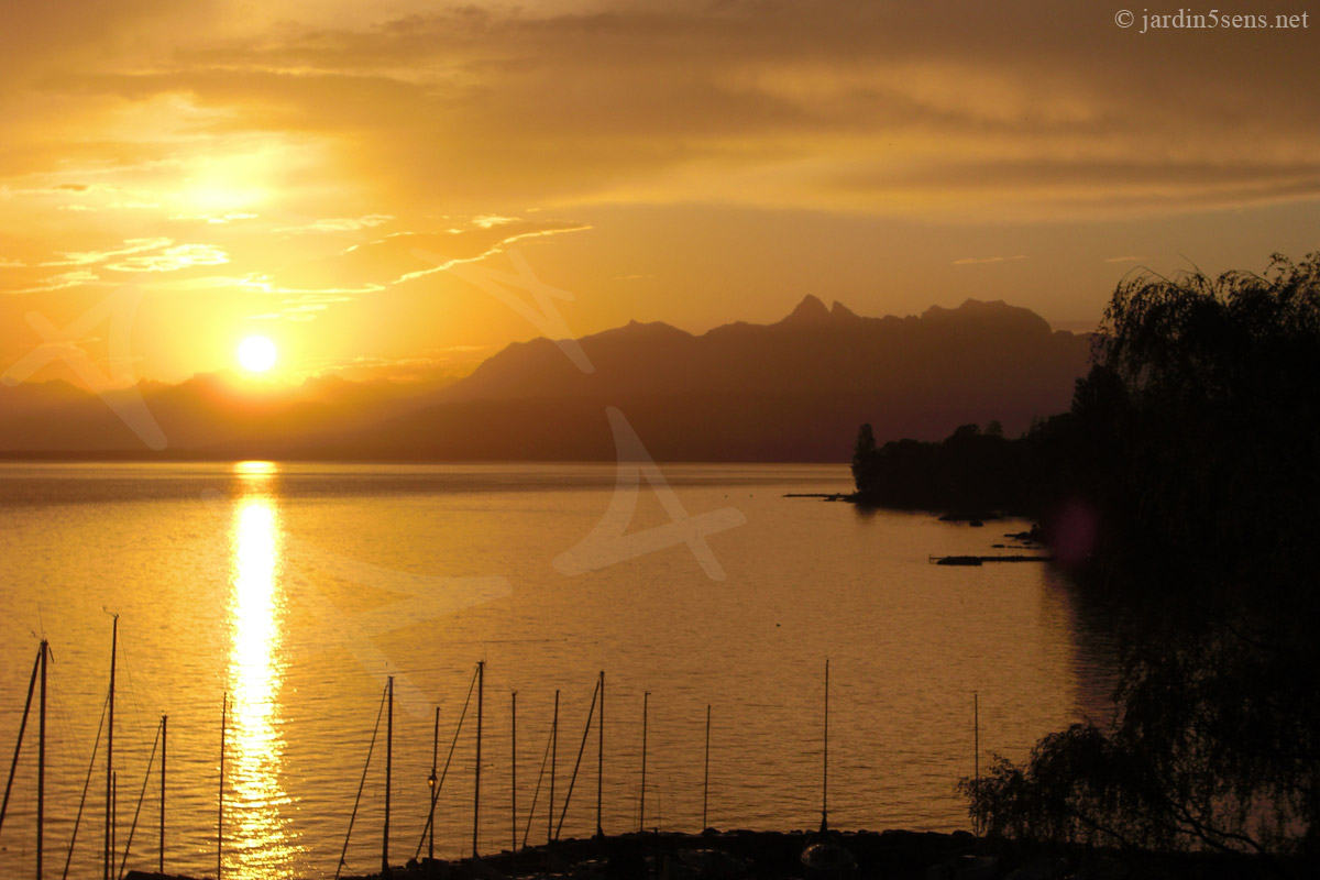 Lever de soleil sur le lac l man depuis yvoire le jardin des cinq sens yvoire - Lever et coucher du soleil france ...