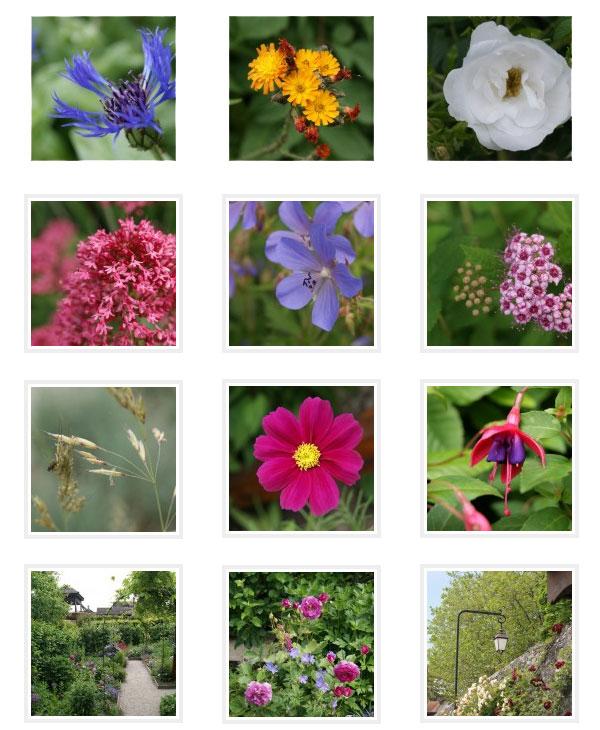 Photos du Jardin des Cinq Sens, Yvoire par Florifère.ch