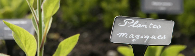 Yvoire - Jardin des Cinq Sens